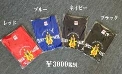 Tシャツ カラーバージョン